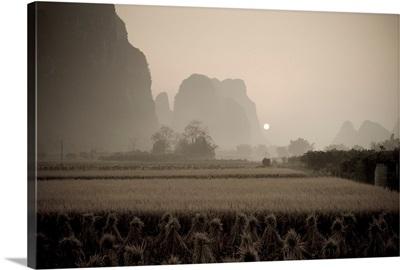 Field In Mountain Area, Yangshuo, Guangxi, China