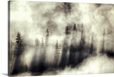 Foggy landscape Stephens Passage Tongass National Forest Summer Alaska /nSoutheast
