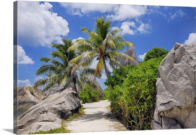 Footpath Through Rocks And Palm Trees, Anse Source DoArgent, La Digue, Seychelles