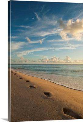 Footsteps On Brighton Beach At Dusk, Barbados; Barbados