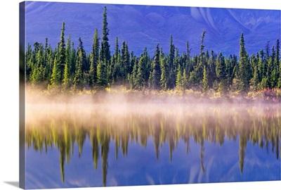 Forest Reflects In Drashner Lake With Mist Along Shoreline, Alaska