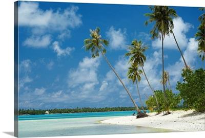 French Polynesia, Tahiti, Maupiti, Lagoon Beach With Palm Trees And Blue Sky