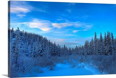 Frozen Stream Along The South Canol Road, Yukon