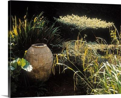 Garden; Urns In A Garden