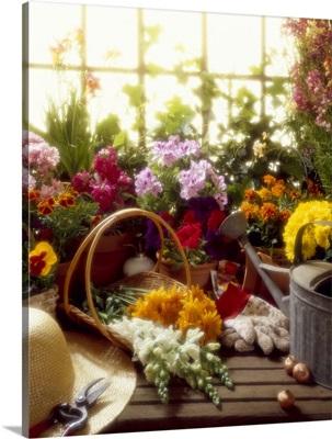 Gardener's workbench with various flowers.