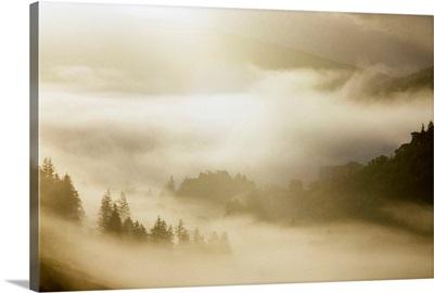 Glendalough, Co Wicklow, Ireland, Mist