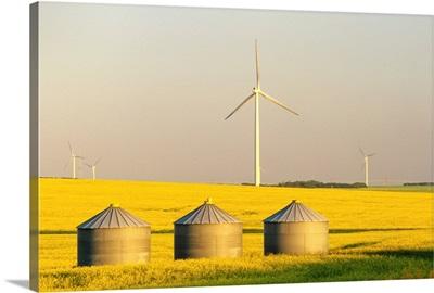 Grain Bins And Wind Turbines In Canola Field, Manitoba, Canada