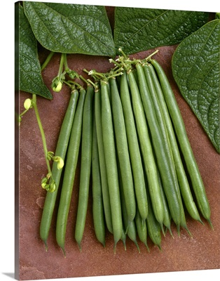 Green beans on stone