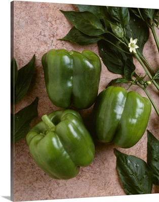 Green bell peppers on textured brown surface