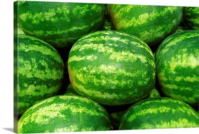 Harvested mature seedless watermelons ready for shipping, Missouri