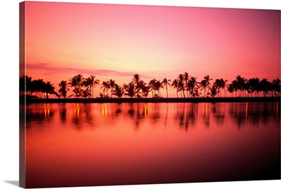 Hawaii, Big Island, Royal Waikoloa, Line Of Palms At Sunset