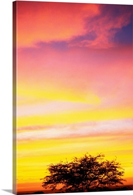 Hawaii, Big Island, Sunset At Kohala Coast