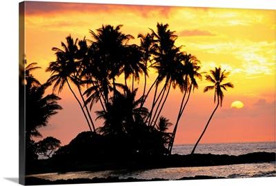 Hawaii, Big Island, Wailua Bay, View Of Palm Trees At Sunset, Calm Ocean Waters