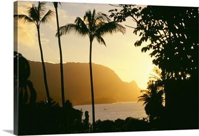 Hawaii, Kauai, Hanalei Bay, Bali Hai, Yellow Sunset Through Palm Trees