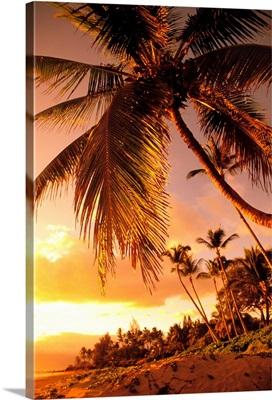 Hawaii, Maui, Kihei, Sunset At Kamaole One