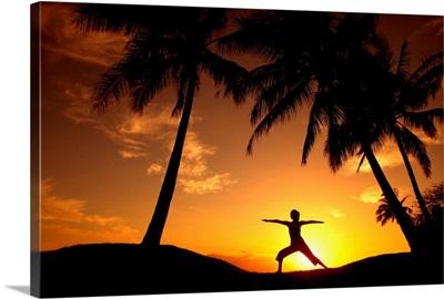 Hawaii, Maui, Olowalu, Woman Doing Yoga At Sunset Under Palm Tree