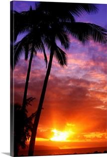 Hawaii, Oahu, Beautiful Sunset