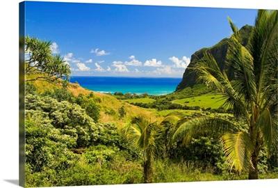 Hawaii, Oahu, Kualoa Ranch, Mountains And Ocean In Distance