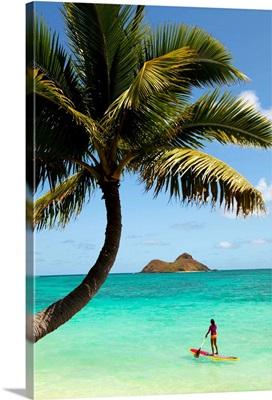 Hawaii, Oahu, Lanikai Beach, Female Stand Up Paddler On Her Way To The Mokulua Islands