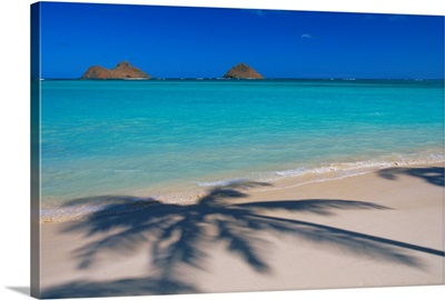 Hawaii, Oahu, Lanikai Beach, Palm Shadows On White Sand