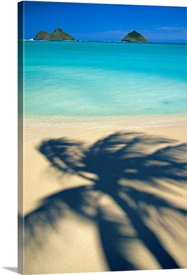 Hawaii, Oahu, Lanikai Beach, Shadow Of Palm Tree Near Mokulua Islands