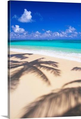 Hawaii, Oahu, Lanikai, Tropical Beach Scene With Palm Shadow On Sand