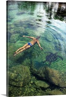 Hawaii, Oahu, Man And Hawaiian Sea Turtle Swimming Side By Side In The Ocean Reef