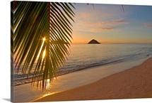 Hawaii, Oahu, Mokulua Islands, Golden Sunrise At Lanikai Beach