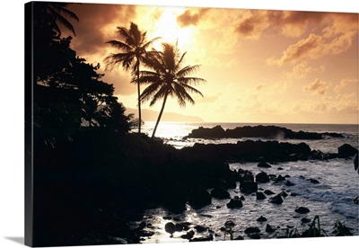Hawaii, Oahu, North Shore, Rocky Shoreline With Palms Silhouetted At Sunset
