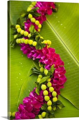 Hawaii, Oahu, Orchid Lei On Banana Leaves