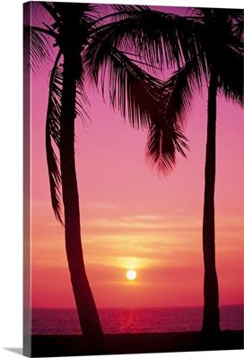 Hawaii, Oahu, Waianae Coast, View Of Sunset Between Two Palm Trees