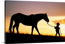Hawaii, Silhouette Of Boy Leading Horse Along Grassy Hillside At Sunset