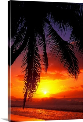 Hawaii, View Of Sunset From The Beach