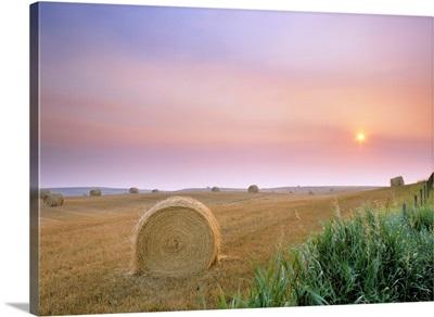 Hay Bales And Sunrise In Fog Near Cremona Alberta, Canada