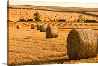 Hay Bales, North Yorkshire, England