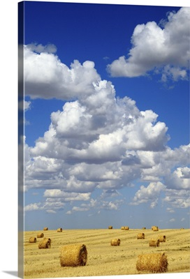 Hay Bales With White Clouds
