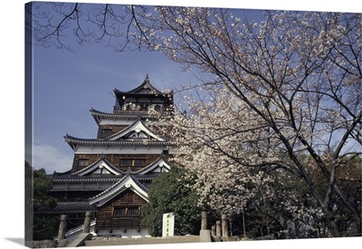 Hiroshima Castle And Cherry Blossoms In Spring
