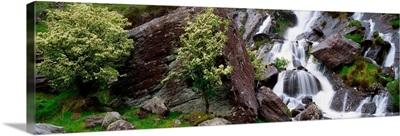 Inchquinn Waterfall, Beara Peninsula, County Kerry, Ireland