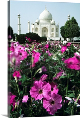 India, Flowers In The Foreground Of The Taj Mahal