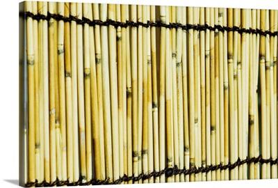 Japan, Tokyo, Meiji Jingu Shrine, Texture Of Bamboo