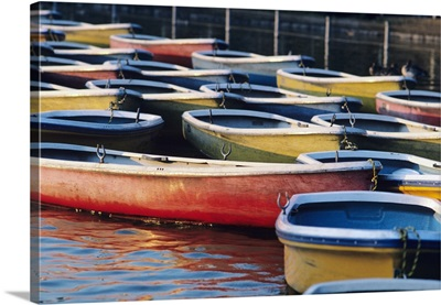 Japan, Tokyo, Ueno Park, Colorful Row Boats Tied Together On Lake