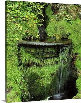 Japanese Garden, Powerscourt Gardens, County Wicklow, Ireland