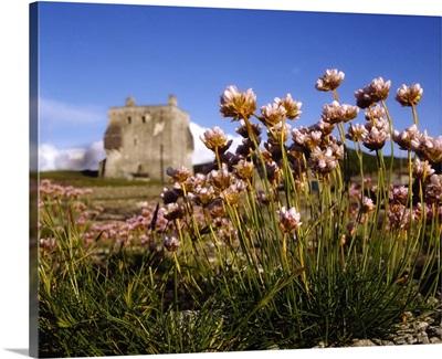 Kildownet Castle, Achill Island, Co Mayo, Ireland, Grace O'malle