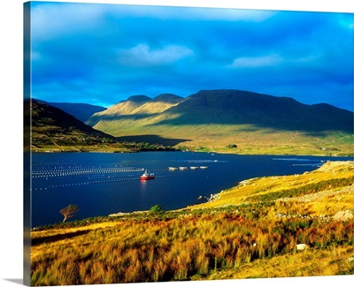 Killary Harbour, Co Galway, Ireland; Fish Farm (Mussels)