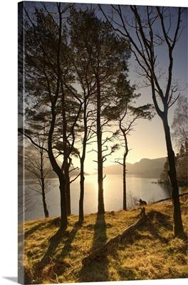 Lake Scenic At Sunrise, Cumbria, England