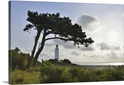 Lighthouse On The Dornbusch In The Morning, Baltic Sea, Western Pomerania, Germany