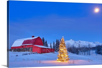 Lit christmas tree in a snow covered field standing in front of a red barn