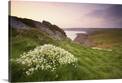 Lizard Point, Lizard Peninsula, Cornwall, England, United Kingdom