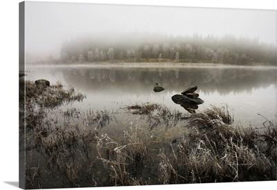 Loch Achray, Loch Lomond And The Trossachs National Park, Trossachs, Scotland, UK