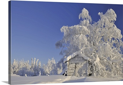 Log Cabin In Winter, Kuusamo, Northern Ostrobothnia, Finland